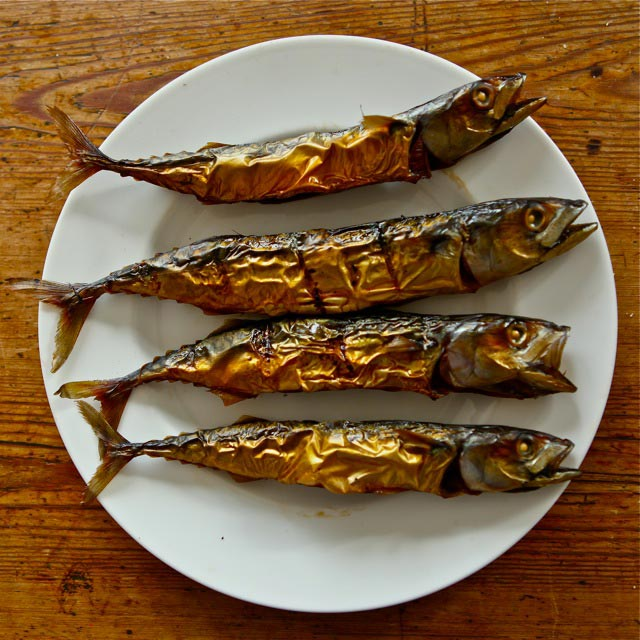 Freshly caught and smoked mackerel